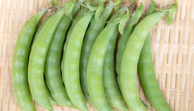 スナップエンドウの育て方・栽培方法